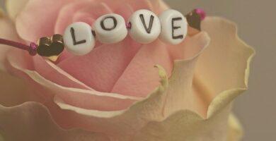 Si yo no tengo amor